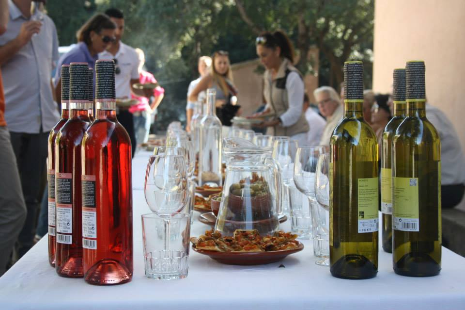 Wine tours in Mallorca